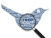 Magnifying Glass - Tweeting Bird — Stock Photo
