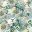 Canadian 20 Dollar Bills — Stock Photo