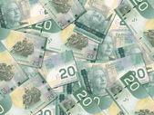 Canadian 20 Dollar Bills — Stock Photo