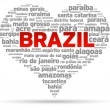 Stock Vector: I Love Brazil