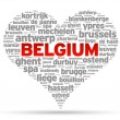 I Love Belgium — Stock Vector