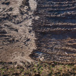 Fragment of field with plowed soil — Stock Photo #6969320