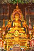 ウボンラーチャターニー, タイの寺院の中の黄金の仏像 — ストック写真
