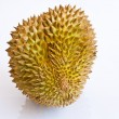 Single whole durian isolated on white background — Stock Photo