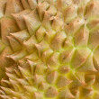 Close up of the durian skin - Stock Photo