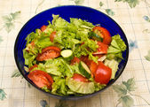 Vegetable salad with salatnike on the table. — Stock Photo