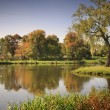Lake in the autumnal park — Stock Photo