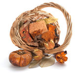 Autumn objects. Thanksgiving day card with pumpkin — Foto Stock