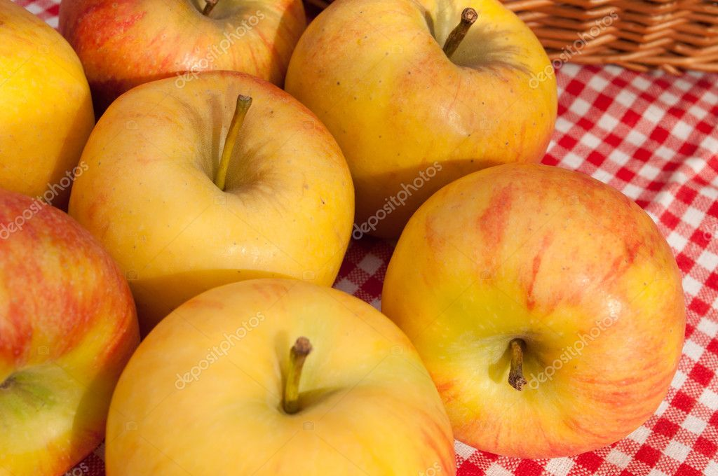 Closeup of Rubens Apples Red Gingham Tablecloth — Stock Photo #6925226