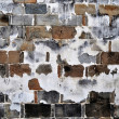 Old brick wall — Stock Photo #6838520