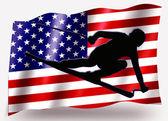 Country Flag Sport Icon Silhouette USA Ski — Stock Photo