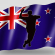 Country Flag Sport Icon Silhouette New Zealand Cricket Bowling — Stock Photo