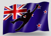 Country Flag Sport Icon Silhouette New Zealand Cricket Catch — Stock Photo