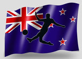 Country Flag Sport Icon Silhouette New Zealand Soccer — Stock Photo