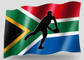 Country Flag Sport Icon Silhouette South Africa Rugby Pass — Stock Photo