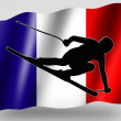 Country Flag Sport Icon Silhouette French Ski - Stock Photo