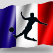 Country Flag Sport Icon Silhouette French Soccer - Stock Photo