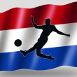 Country Flag Sport Icon Silhouette Dutch Soccer — Zdjęcie stockowe