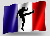 Vlag land sport pictogram silhouet franse rugby hoge kick — Stockfoto