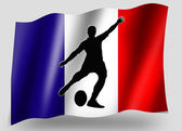 Country Flag Sport Icon Silhouette French Rugby Place Kick — Stock Photo