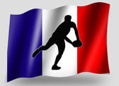 Country Flag Sport Icon Silhouette French Rugby Pass — Stock Photo