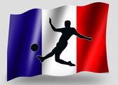Vlag land sport pictogram silhouet franse voetbal — Stockfoto