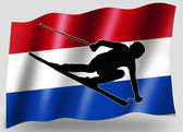 Country Flag Sport Icon Silhouette Dutch Ski — Stock Photo