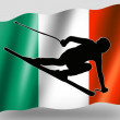 Country Flag Sport Icon Silhouette Irish Ski — Stock Photo