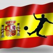 Country Flag Sport Icon Silhouette Spanish Soccer — Stock Photo