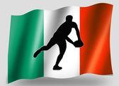 Bandera de país pase de rugby irlandés de silueta icono del deporte — Foto de Stock
