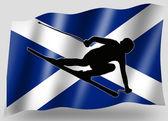 Country Flag Sport Icon Silhouette Scottish Ski — Stock Photo