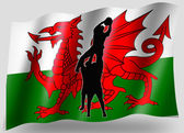 Silhueta de ícone do país bandeira esporte galês lineout rugby — Foto Stock