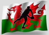 страны флага силуэт спорт значок валлийский регби перевал — Стоковое фото