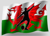 Country Flag Sport Icon Silhouette Welsh Rugby Place Kick — Stock Photo