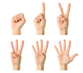 Counting woman hands (0 to 5) — Stock Photo