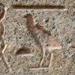 Stock Photo: Pharaoh language scribes on marble stone in Cairo. Egypt backgro