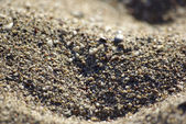 Close-up of sand at the beach of Mediterranean Sea, Turkey. Back — Stock Photo