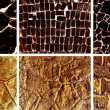Stock Photo: Collection of fantastic inferno backdrops 1600 x 1200.