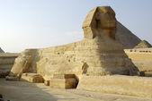 Görkemli sfenks ve bir gize piramitleri, kahire, mısır. — Stok fotoğraf