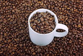 White coffee cup on brown roasted beans as background. — Stock Photo