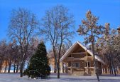 Zimą — Zdjęcie stockowe