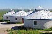 Yurt in Mongolia Grassland — Stock Photo