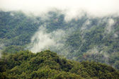 Mountain with fog — Stock Photo