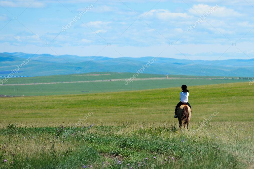 Cavallo nella prateria foto stock raywoo 7492574 for Piani domestici della prateria contemporanea