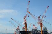 Cranes — Stock Photo