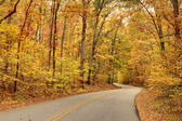 Camino de otoño — Foto de Stock