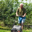 Senior man mowing lawn — Foto Stock