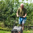 Senior man mowing lawn — Stockfoto