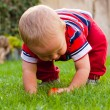Royalty-Free Stock Photo: Toddler discovering nature