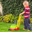 Stock Photo: Little boy gardening
